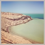 Trying to spot a shark at Eagle Bluff, Shark Bay.