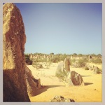 We finally make it to the Pinnacles in Nambung National Park. Wow!