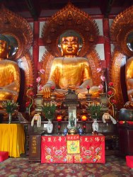 Bronze buddhas at Temple of Six Banyans
