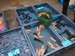 Fish with feet at Qingping Market