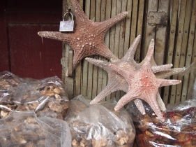 Starfish, Qingping Market