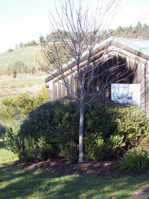 The Truffle Shed at Ruffles Estate