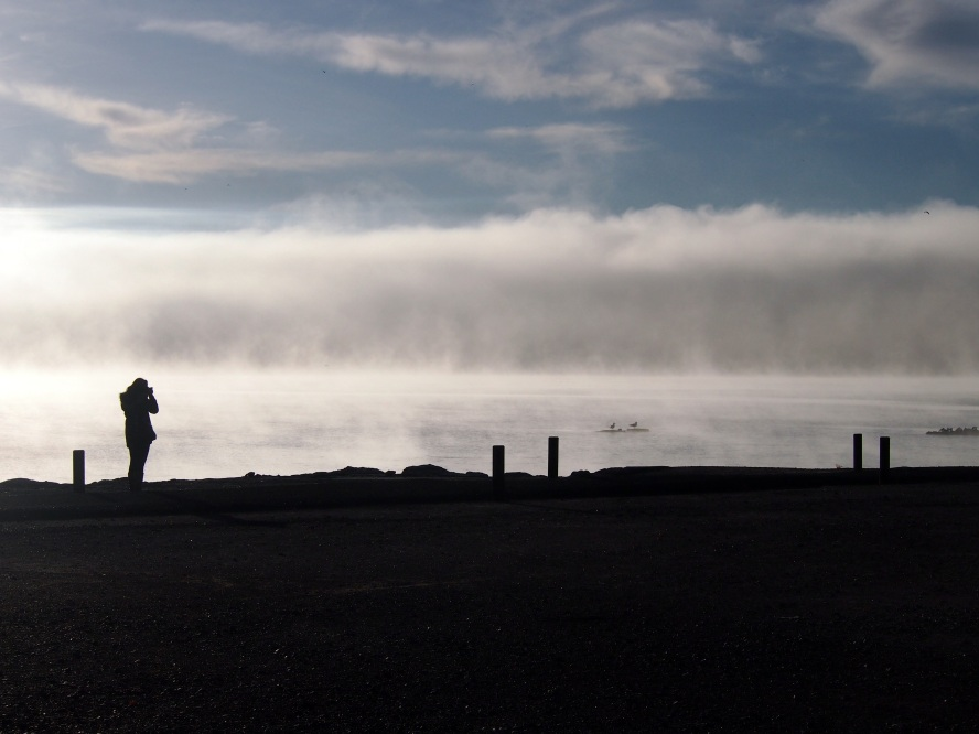Misty lake view